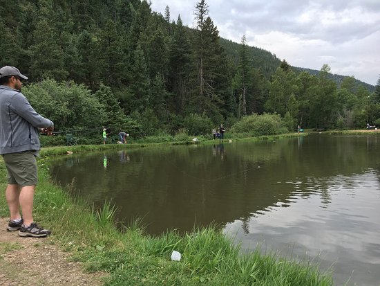Picture of mount evans trout fishing idaho for Fishing colorado springs