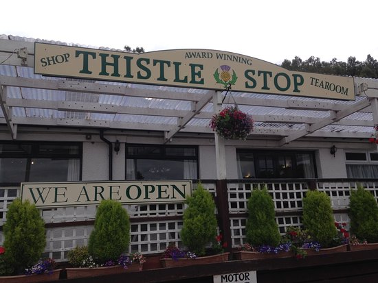The Thistle Stop: From the front