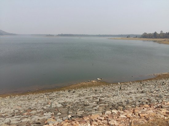Gondia, Inde : Last time i visit chulbandh dam in february .....it has not good place for go with family but yo