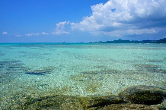 Ojima Coast : 視界も広くどこまでもエメラルドグリーンの海が見渡せます。