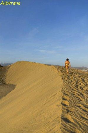 playa de maspalomas tripadvisor