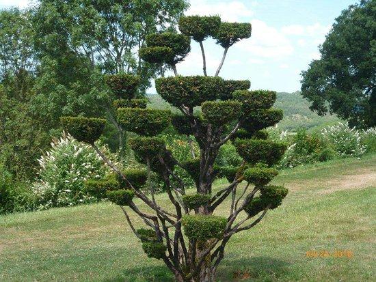 picture of les jardins du manoir d eyrignac