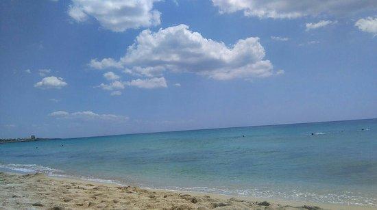 B&B Macchia Mediterranea