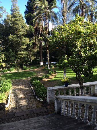 Hacienda Pinsaqui: the beautiful grounds