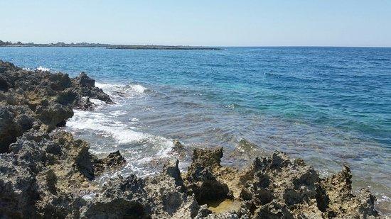 Spiaggia Top