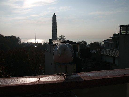 Foto de Hotel Turkoman