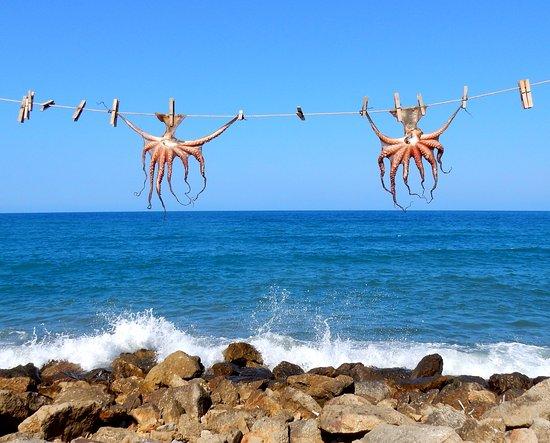 Grand Bay Beach Resort: Lokale spesialiteter