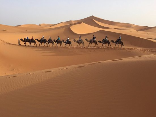 Morocco Countryside Tours : Morocco Tour - Camel ride