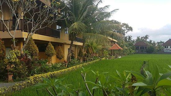 Sri Bungalows: IMG-20160803-WA0002_large.jpg