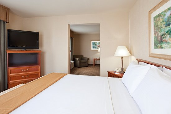 Holiday Inn Express & Suites Columbus Southeast: Suite