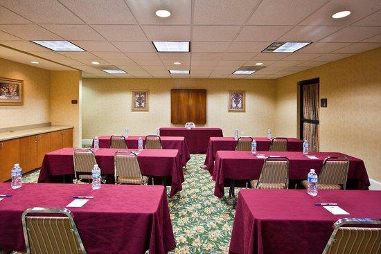 Holiday Inn Express Hotel & Suites - Veteran's Expressway: Meeting Room