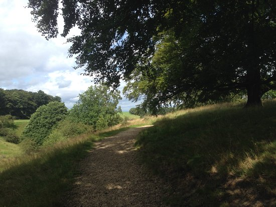 Lyme Park: One of the walks back towards the entrance