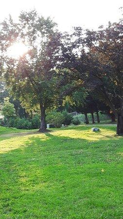 College Park, MD: 20160802_192242_large.jpg