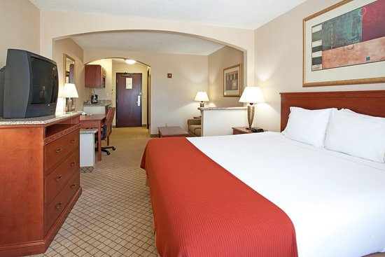 Holiday Inn Express Hotel & Suites Garden City: King Bed Guest Room