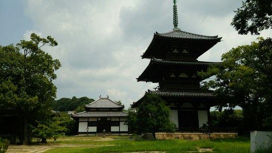 Hokiji Temple: DSC_0896_large.jpg