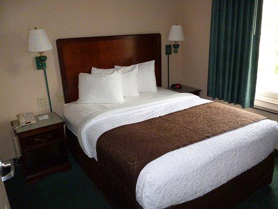MainStay Suites Airport: Single Queen Suite