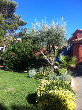 Cela Canet - Residence Malibu Village : Jardins