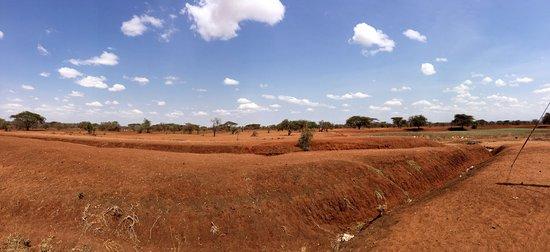 Amboseli National Park, كينيا: photo9.jpg