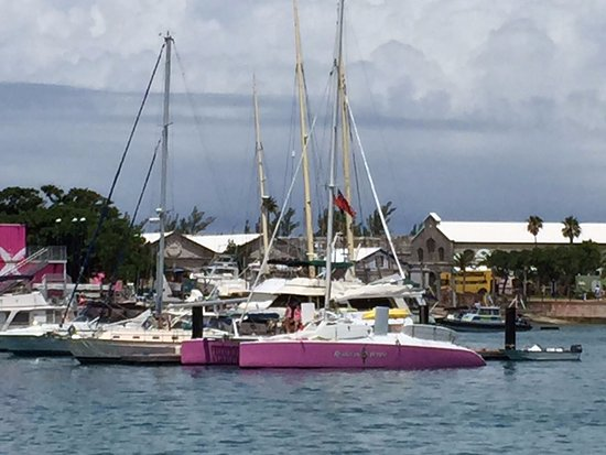 Hamilton, Bermuda: The cutest catamaran ever!!!! So easy to find it--it's PINK :)