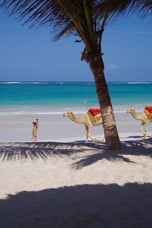 Waterlovers Beach Resort: photo1.jpg