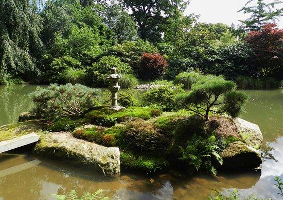 Japonais picture of parc botanique de haute bretagne le chatellier tripadvisor - Parc botanique de haute bretagne ...