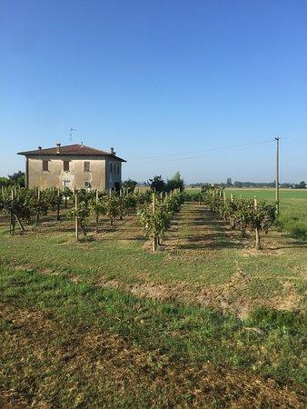 เอมีเลีย-โรมานยา, อิตาลี: We had an amazing time thanks to the hospitality of Roberto and Elizabeta. Very clean rooms and