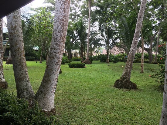 Тамбора, Коста-Рика: This is a beautiful place in Costa Rica Tambor Beach.