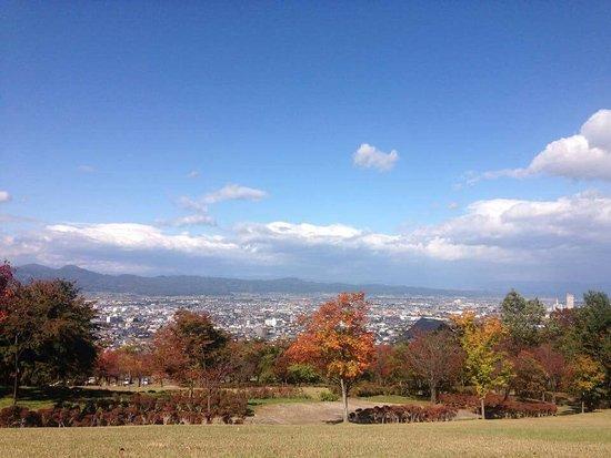 TOHOKU UNIVERSITY OF ART AND DESIGN GAKUSEI SHOKUDO