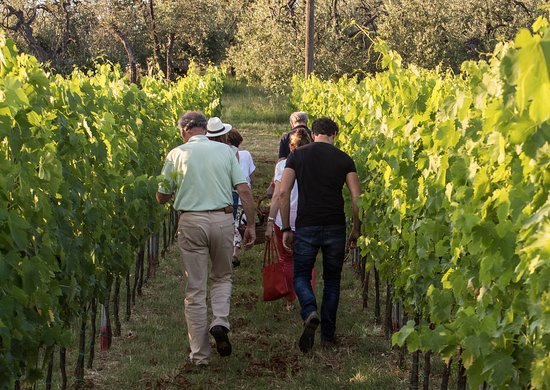 Certaldo, Italia: the way to our SPECIAL hidden location for the tastings