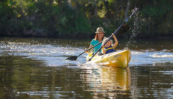 There are many rivers and waterways to paddle and explore in Sarasota