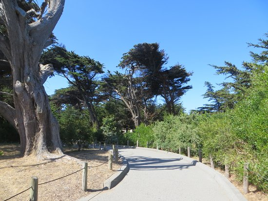 San Francisco Zoo: Chemin et le décors dans le zoo