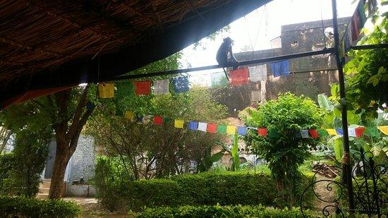 Good Om Shiva Garden Restaurant: 20160804_104857_large