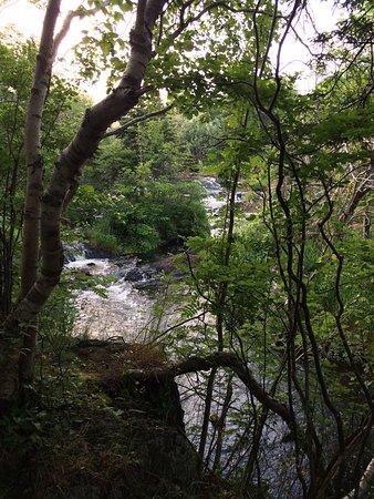 Rennie's River Trail: photo1.jpg