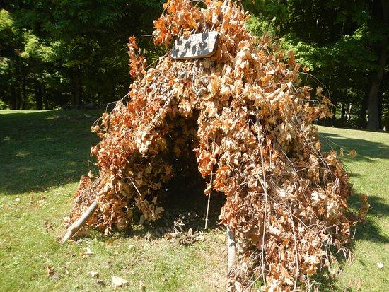 Orwell, เวอร์มอนต์: Soldier hut