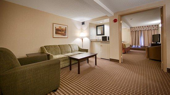 Best Western Plus Ottawa Kanata Hotel & Conference Centre: Guest Room
