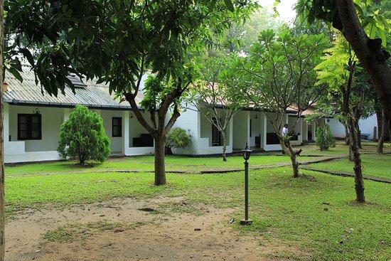 Dambulu Oya Family Park: Rooms