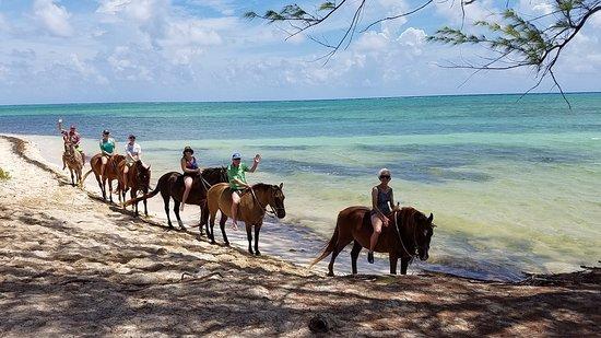 Cayman Horse Riding