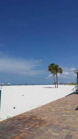 Mariner Beach Club: received_588166954702742_large.jpg
