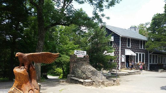 Horse Cave, KY: 20160805_122017_large.jpg