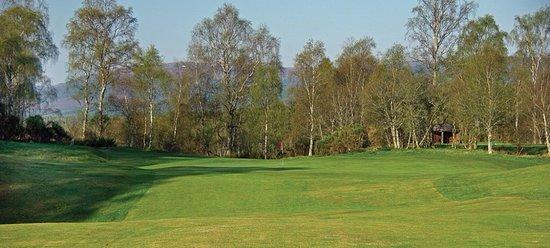 Boat of Garten Golf Club: Truly a James Braid classic, true hidden gem!