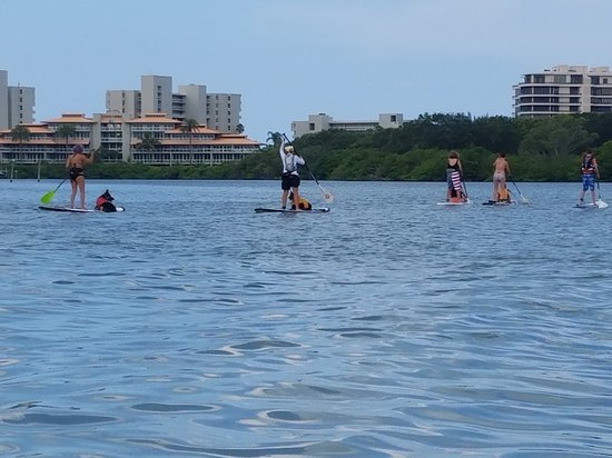 SUP Sarasota: kids, dogs, family time at its best! No one is left behind here
