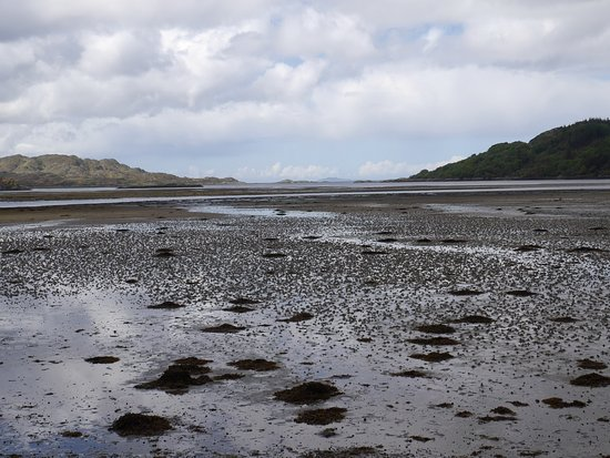 Lochaber, UK: View from shoreline at Castle Tioram