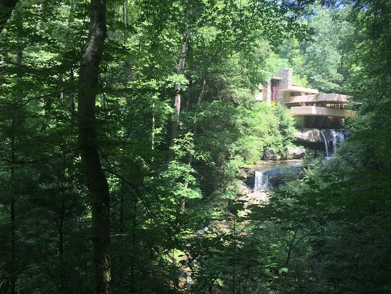 Fallingwater: Perfect view