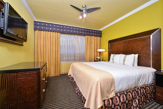 Holiday Inn Hotel & Suites McKinney - Fairview: Guest Room