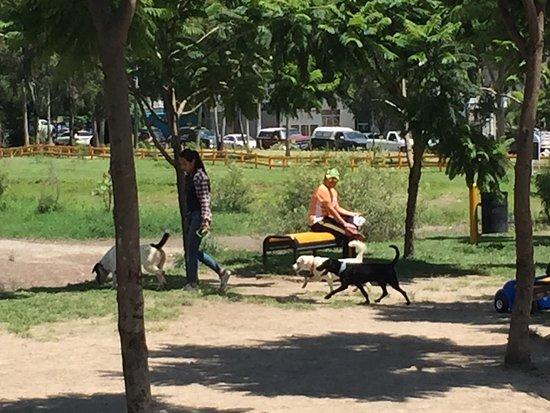 Parque Metropolitano: photo0.jpg