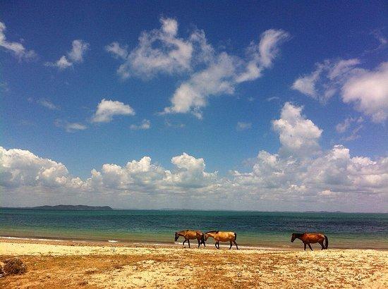 Pousada Nel Blu: praia de ponta de areia
