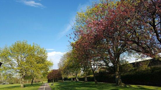Seven Kings Park