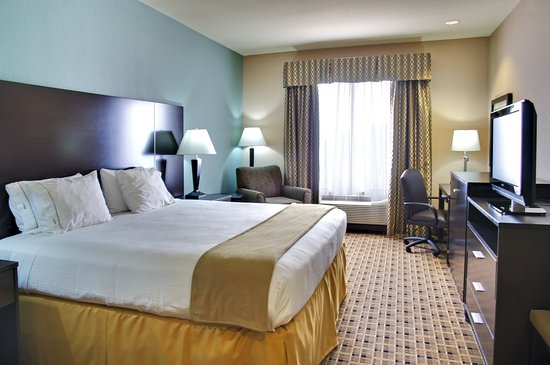 Holiday Inn Express Hotel & Suites Houston Energy Corridor-W Oaks : Single Bed Guest Room