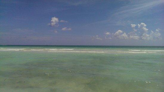Xanadu Beach: IMAG2665_large.jpg