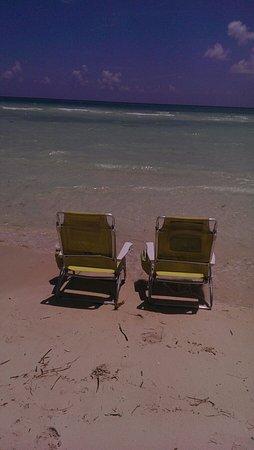 Xanadu Beach: IMAG2657_large.jpg